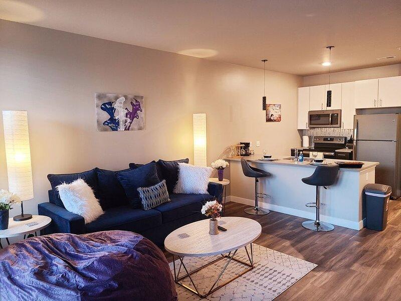 Immaculate Luxury Suite 119- Queen, holiday rental in East Carondelet