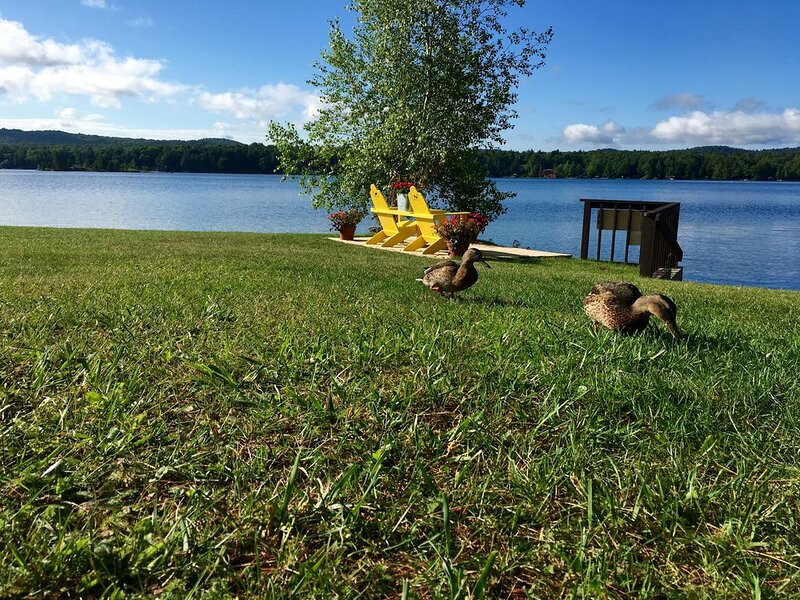 Cottage with Million Dollar views too!, holiday rental in Old Forge