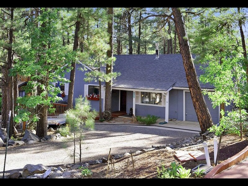Charming Lazy Bear Cabin nestled in the Cool Pines! December openings!, alquiler de vacaciones en Munds Park
