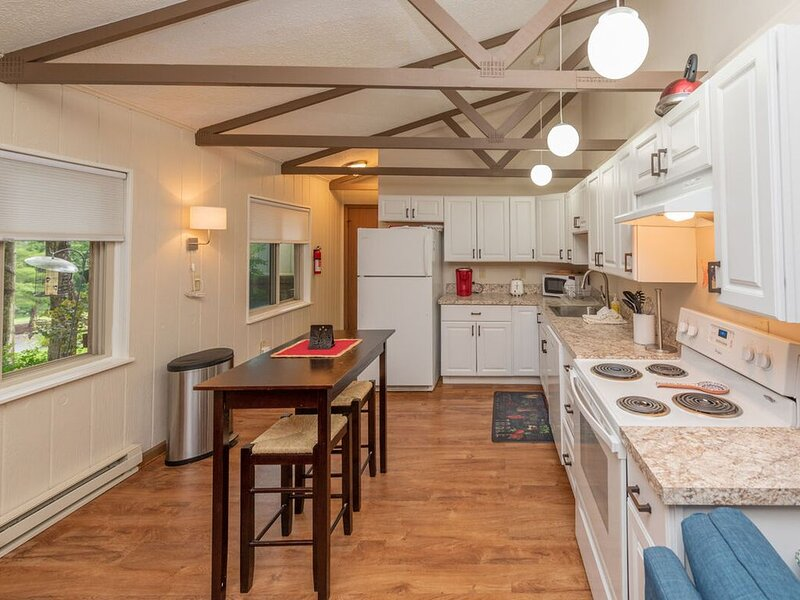 Lake Area Townhouse #07 w/Wood Fireplace & WIFI!, holiday rental in Accident