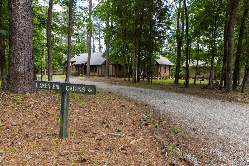 Lakefront * Lakeview Cabin Family gatherings, team builder, church retreats – semesterbostad i Acworth
