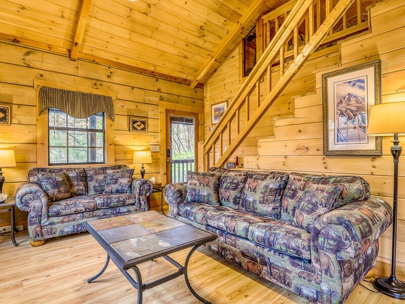 Dog-friendly cabin w/ screened porches/ private hot tub/ pool table/ free WiFi!, vacation rental in Mineral Bluff