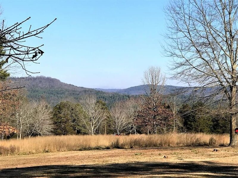 WanderLost Ozarks - Dog friendly, 4 acres, holiday rental in Russellville