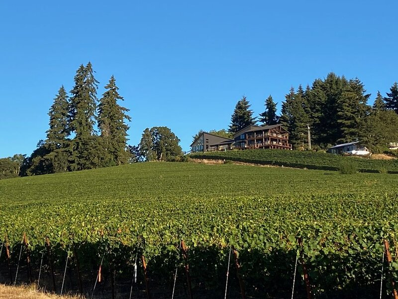 Balanza Vineyard Guest House, holiday rental in Lafayette