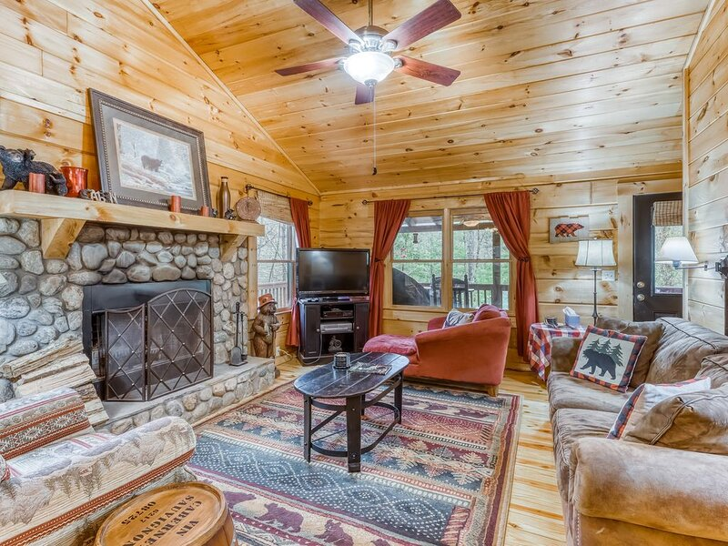 Dog-friendly cabin with private hot tub, and screened-in porch!, holiday rental in Gilmer County