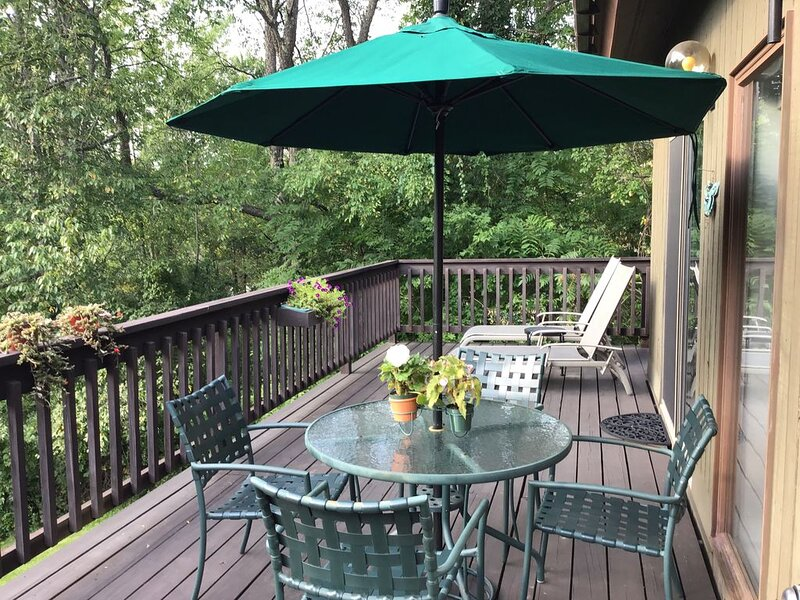 COME FOR THE VIEWS -- STAY FOR THE MANY ACTIVITIES OR SIMPLY RELAX, holiday rental in Arlington