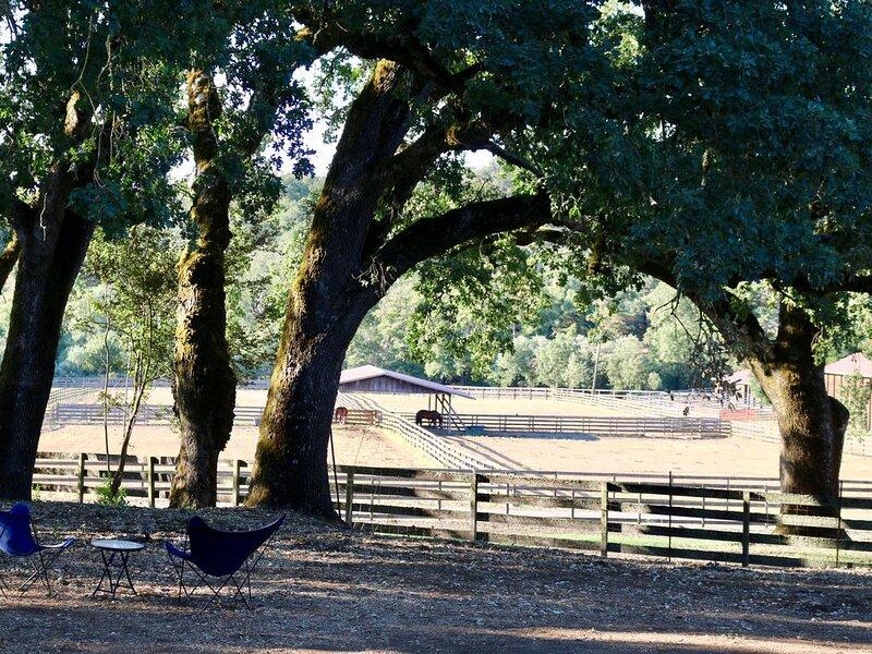 Sonoma Farmhouse with private garden, fiber optic internet and A/C, location de vacances à Santa Rosa