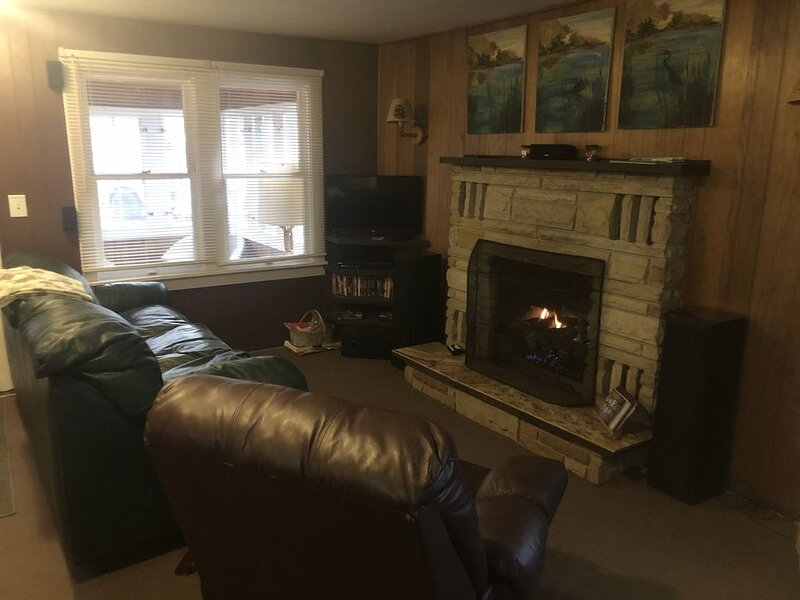 The Pines Hideaway Cabin by Tippy Dam, holiday rental in Manistee County