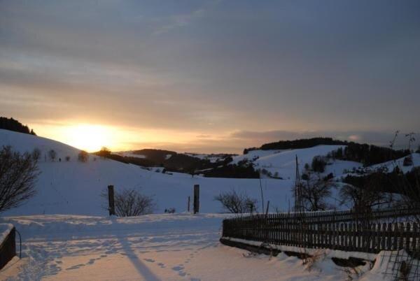 Winter-Aussicht vom Sitzplatz gegen Westen