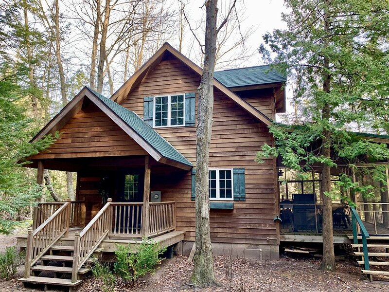 Cozy Cabin on the Betsie River, vacation rental in Benzie County