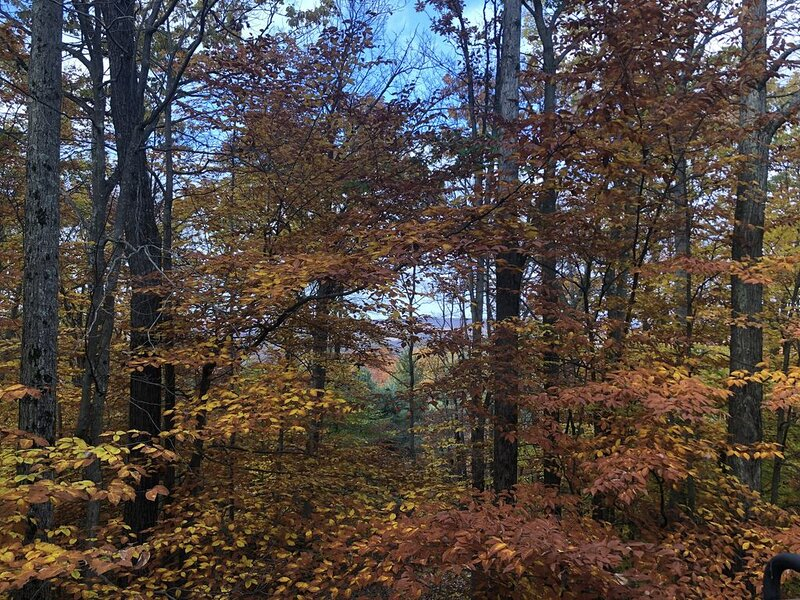 Jack Frost Mountain: Ski out to trails. Golf, hiking, biking, water sports, more, holiday rental in Blakeslee