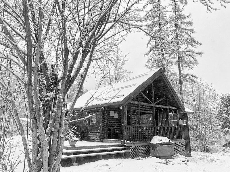Cozy Log Cabin in Pristine Nature, location de vacances à Nelson