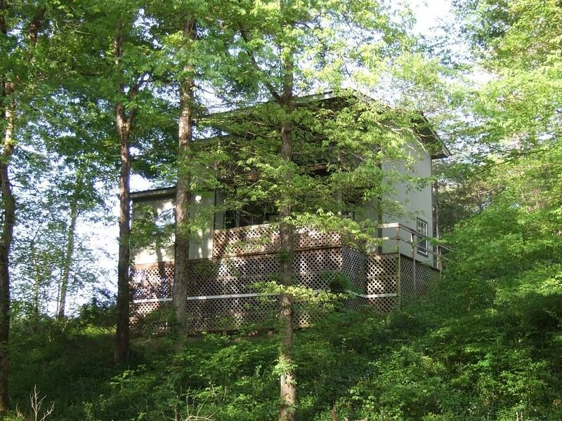 Ouachita Rose - Private Cabin with Hot Tub, holiday rental in Pencil Bluff