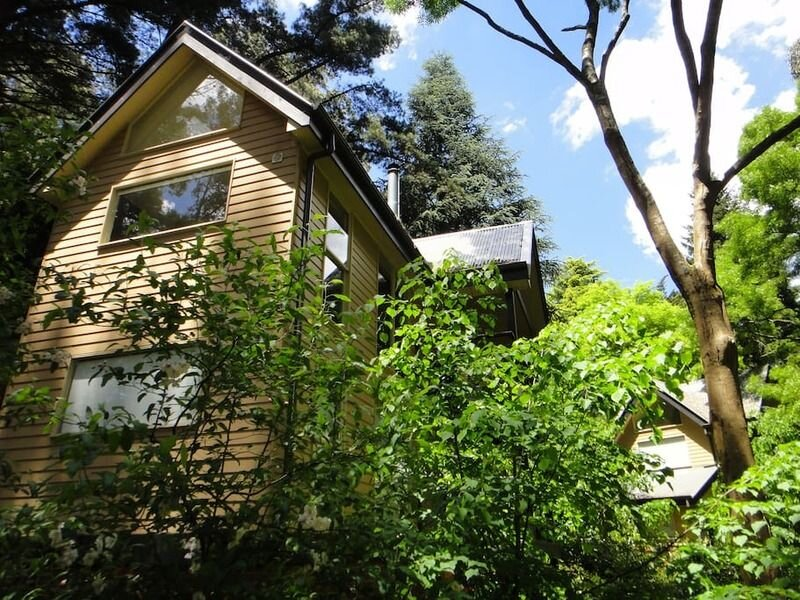 Romantic Treetops Cottage, spa, fire!, casa vacanza a Olinda