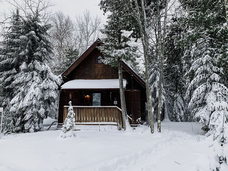 Aspen Chalet - Two Bedroom Modern Boreal Forest Living, location de vacances à Cornucopia