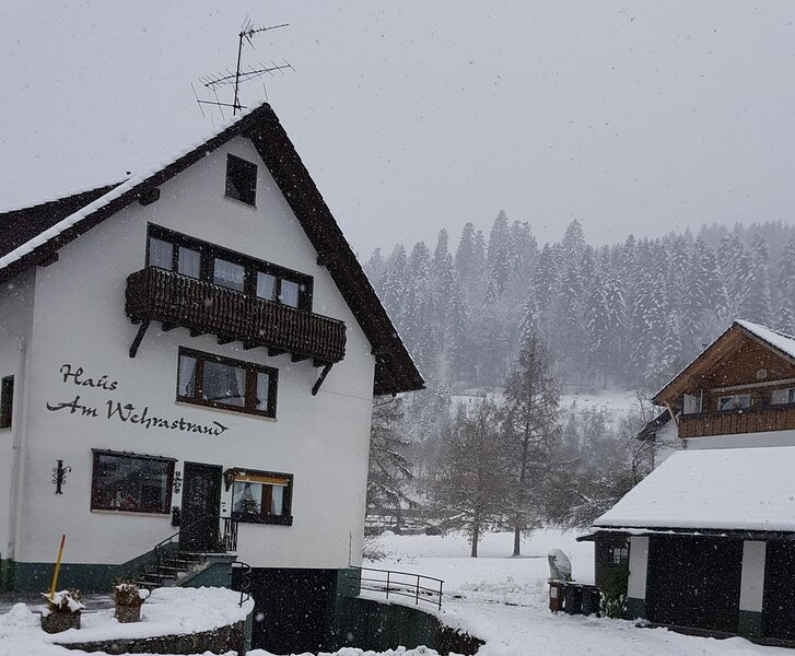 Gemütliches Einzelapartment im Kurort im Südschwarzwald mit Bergblick, Balkon, G, holiday rental in Herrischried