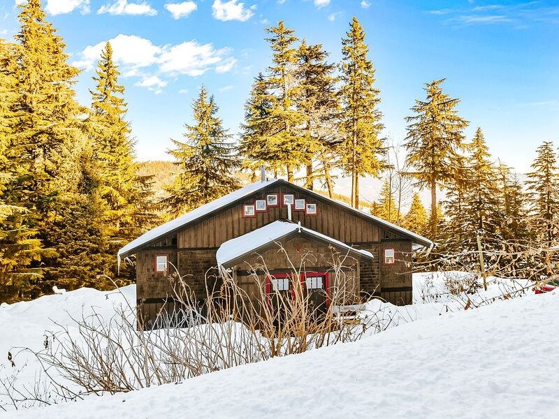 Schweitzer Mountain getaway w/ a private hot tub & easy ski slope access, alquiler vacacional en Sandpoint