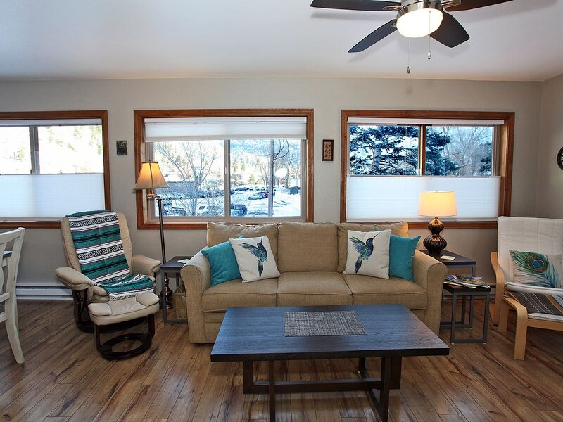 On the river, near the Hot Springs Pool, close to town!, holiday rental in Ouray