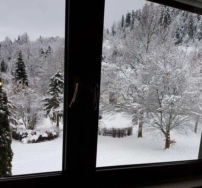Gemütliches Apartment im Kurort im Südschwarzwald mit Bergblick, Balkon, Garten, holiday rental in Herrischried