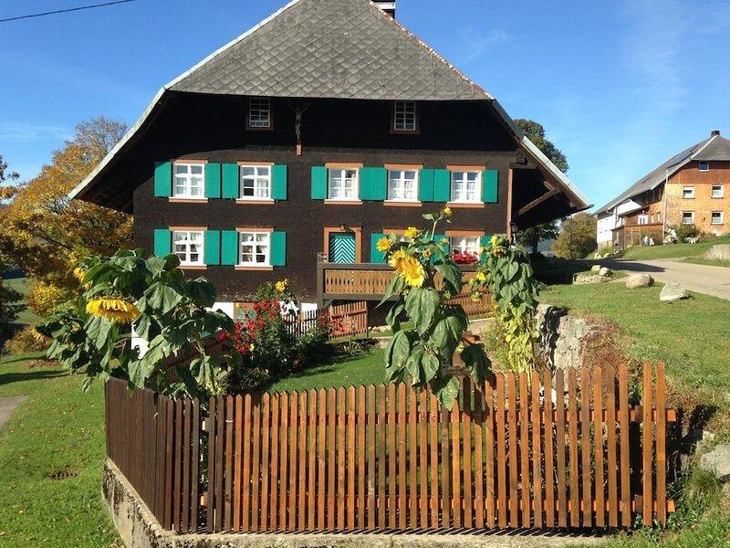 Ferienwohnung Bernau für 1 - 6 Personen - Ferienwohnung, holiday rental in Menzenschwand-Hinterdorf