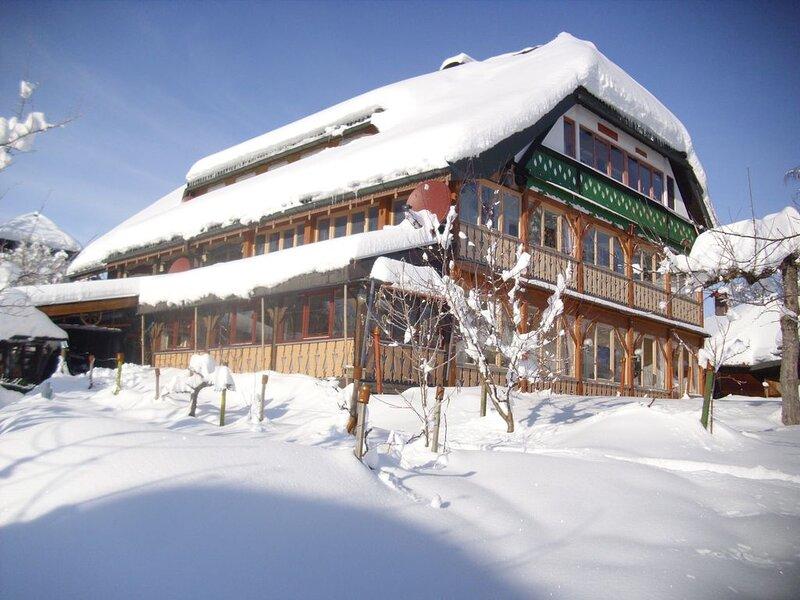 Vacation home Bernau for 2 - 4 persons with 2 bedrooms - Farmhouse, location de vacances à Menzenschwand