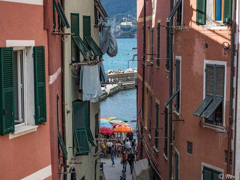 El Nin appartamento centrale Vernazza terrazza, 2 camere, 2 bagni e vista, holiday rental in Vernazza