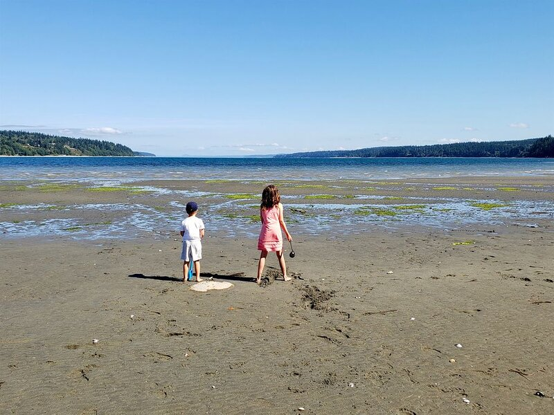 Play and explore on Holmes Harbor.