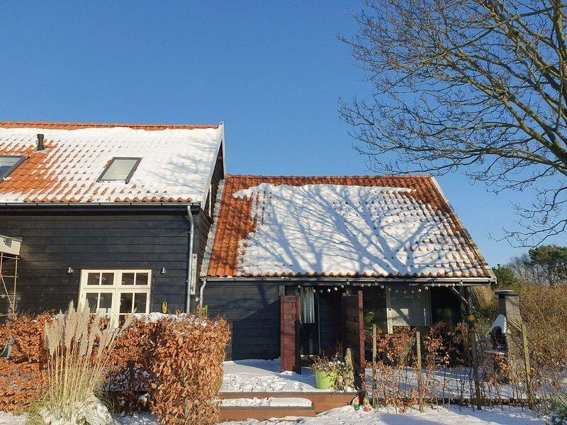 Luxuriöses Ferienhaus für 6 Personen in Ouddorp, holiday rental in Goedereede