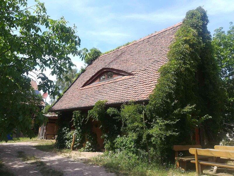 Ferienhaus Lehmhaus mit Naturbadeteich, vacation rental in Baruth