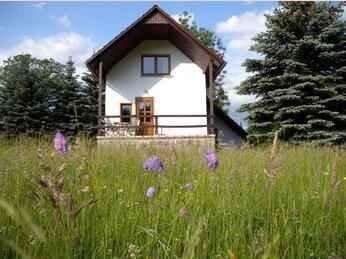 Ferienhaus mit Kamin, vacation rental in Grabfeld