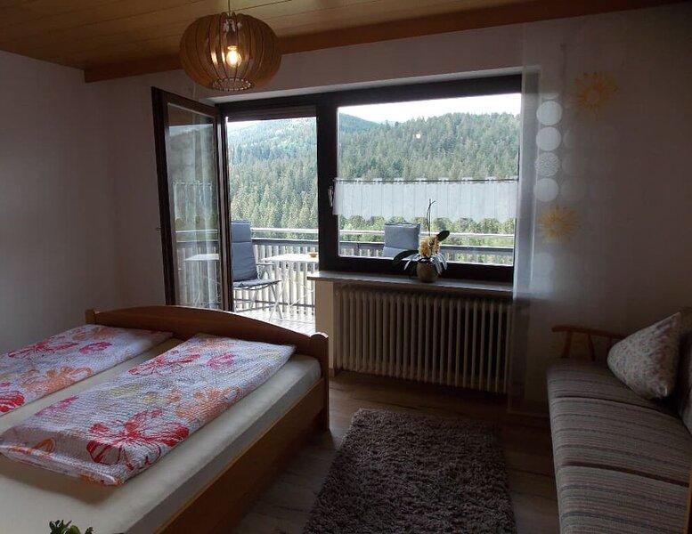 70qm-FeWo mittem im Bayerwald mit Balkon und WLAN, holiday rental in Bayerisch Eisenstein