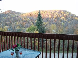 Tremblant 4km, studio in nature, walking distance to all commodities