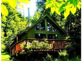 Catskills Retreat - Piney Point