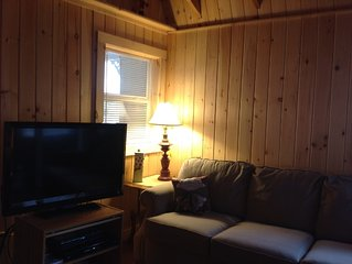 Mountain views spacious 2 bedroom single level cabin cottage