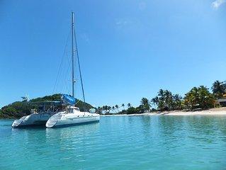 Sailing Catamaran In The Grenadines