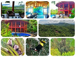 Pure jungle seclusion, 15 minutes from the beach