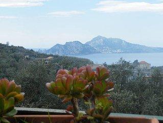 Casa Tatti. Vista su Capri