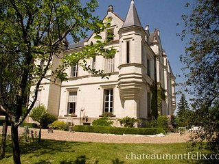 Charming Chateau next to the Jewel of the Loire Valley