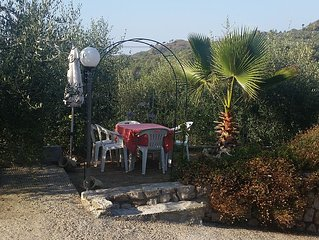 """""""Relax among the olive trees ..."""""""