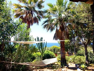 Beach villa surrounded by large garden at 100m fr