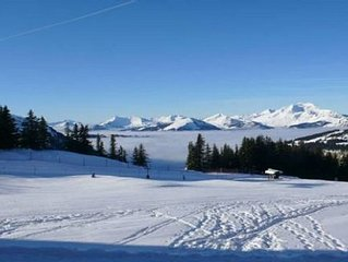 Falaise Apartment, Ski In Ski Out With Stunning Views!