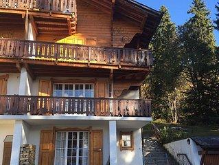 2 Bedroom apartment in Chalet for ski / summer ho