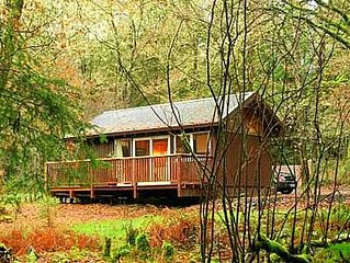 KINGLAS is a charming cabin in a lovely, peaceful location deep in the forest