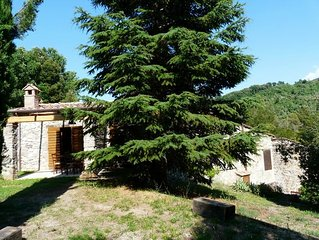 beautiful accommodation in a quiet location and with huge big garden