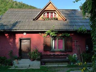 Ferienwohnung mit Terrassenblick ins schöne Weintal