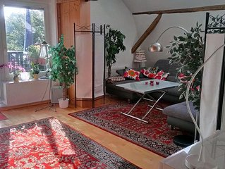 close to town living in Bad Schwartau OT Gr. Parin, 3-bedroom apartment with lo