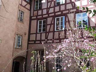 'Lisele' Renovated apartment, F2, Petite France, a short walk from town center