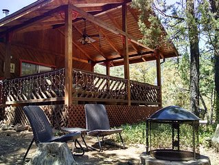 Newly Renovated 3 Bed  2 Bath Secluded Cabin , Backing To The Natural Forest!