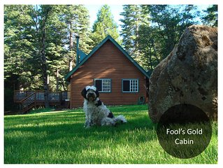 Peaceful 10 acres with luxury cabin; serene mountain Views; Charming and Classy!
