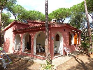 Villa fur 8 Personen im Pinienwald